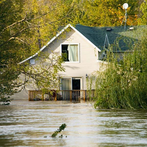 flood-img