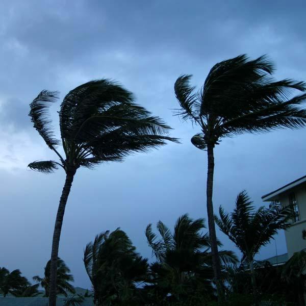 wind-insured-losses