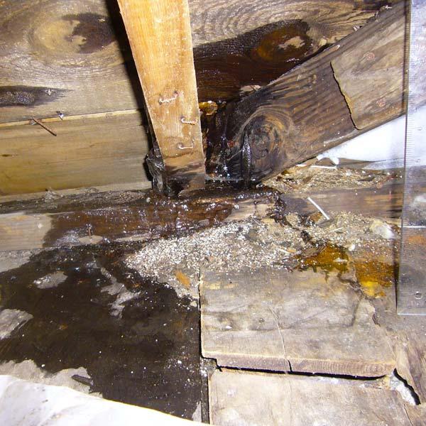 Water Leak Damage