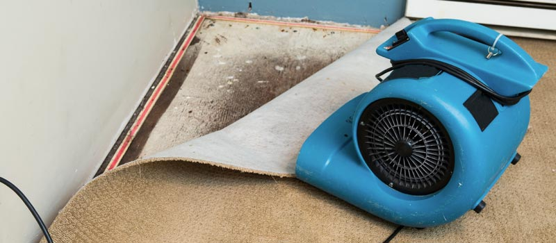 Fan Drying Mold